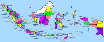 Distributor resmi wsc biolo seluruh indonesia